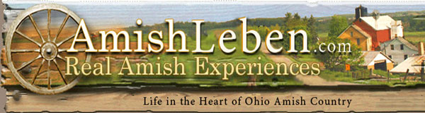 Amish-Leben-Life-in-the-Heart-of-Amish-Country-2